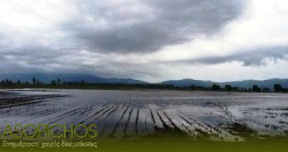 πλημμυρες χωραφια